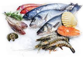 Cá biển- thực phẩm giàu chất dinh dưỡng