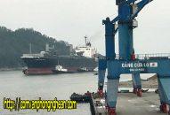 Kim ngạch xuất khẩu Nghệ An 2018 đạt 1 tỷ USD